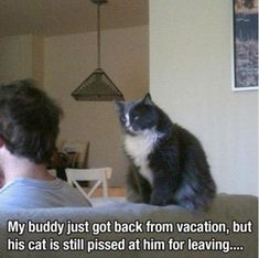 Funny Pictures - 40 Pics