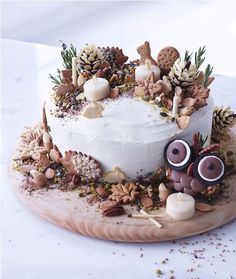 Frances Quinn shows how to create a showstopper cake from the MS Victoria Sponge Cake with chocolate pine cones, edible soil and biscuit animals. Frances says you and your kids can create the biscuits together as a fun activity. Victoria Sponge Kuchen, Beautiful Cakes, Amazing Cakes, Frances Quinn, Bolo Original, Strawberry Decorations, Woodland Cake, Christmas Cake Decorations, Christmas Cakes