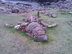 Awesome natural sculpture of a Basking shark on the Scottish west coast. The real ones sometimes move a bit faster than this one!