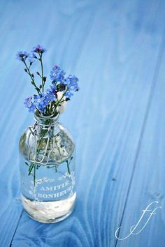 Find images and videos about blue, flowers and floral on We Heart It - the app to get lost in what you love. Love Blue, Blue And White, Blue Flowers, Wild Flowers, Simple Flowers, Vintage Flowers, Deco Floral, Blue Aesthetic, Something Blue