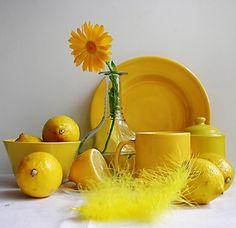 Gerbera, Mustard, Dandelion, Pineapple, Lemon, Banana, Things To Come, Color Yellow, Monochrome