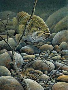 Panfish Paradise 3D Lenticular Art Print | Wild Wings
