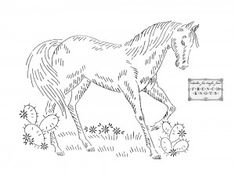 horse embroidery patterns and other free patterns