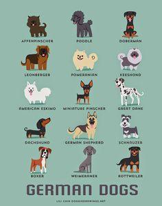 German dogs (c) Lili Chin @ doggiedrawings.net