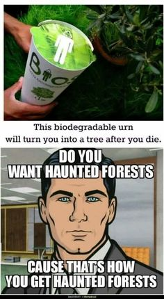 Kinda want a haunted forest...