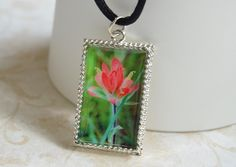 Indian Paintbrush Wildflower Photo Pendant by LittleVisionsByAnn on Etsy https://www.etsy.com/listing/181222526/indian-paintbrush-wildflower-photo