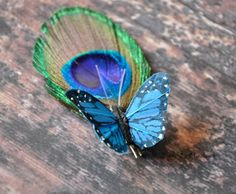 Hey, I found this really awesome Etsy listing at https://www.etsy.com/listing/184529906/choose-your-butterfly-color-feather