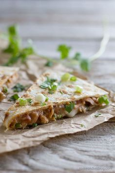 Taco seasoned chicken and refried beans make up the filling in this Rio Grande Chicken Quesadilla Recipe that is family friendly and filling.
