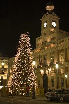 Puerta del Sol. Árbol de Navidad.  (Madrid).