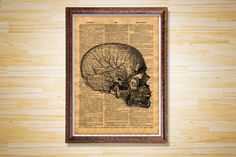 Skull with veins print Medical poster by CrowDictionaryPrints