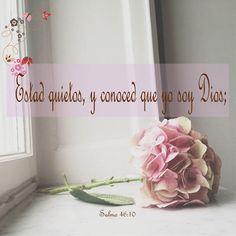 Salmos 46:10 Estad quietos, y conoced que yo soy Dios; Seré exaltado entre las…