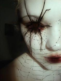 Spider Queen Makeup Creativeboss   spider eye photo SpiderCaughtMyEye.jpg
