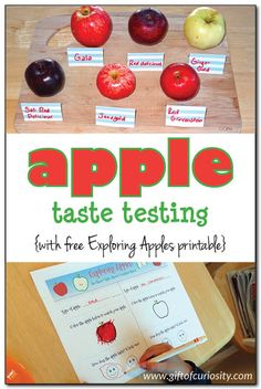 Apple taste testing: Kids can compare the different tastes and textures of apples with this taste testing activity. Plus, kids can record their findings on the free Exploring Apples printable. #apples #freeprintable    Gift of Curiosity