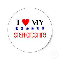 We love our staffy !!!
