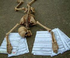 exam, papers, and skeleton image Reaction Pictures, Funny Pictures, Studying Funny, Funny Skeleton, Skeleton Pics, Medical Wallpaper, Medicine Student, Applis Photo, Medical Art