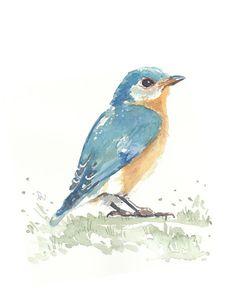Bluebird in Profile - ORIGINAL Watercolor Painting - 8x10