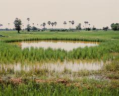 Bomb Ponds by Vandy Rattana