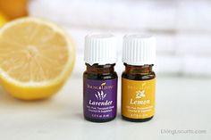 Homemade Lemon & Lavender Linen Spray with Essential Oils. LivingLocurto.com