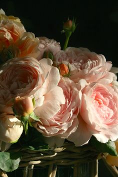 the Polished Pebble: Old Fashion Romantic Roses