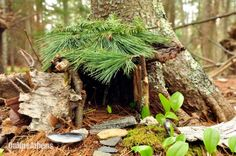 Fairy gardens spark creativity in kids and adults...check out this web site.