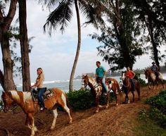 Hawaii Resorts | Turtle Bay Resort Oahu