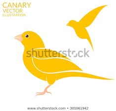 Canary bird. Vector illustration Canary Birds, Bird Illustration, Pikachu, Art Prints, Drawings, Character, Art Impressions, Sketches, Drawing