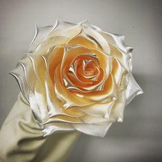Rose en dégradé