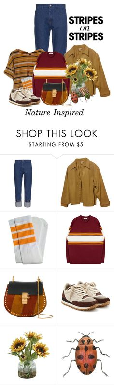 """""""Pattern Challenge:  Stripes on Stripes!"""" by shamrockclover ❤ liked on Polyvore featuring MM6 Maison Margiela, Coldwater Creek, Chloé, Brunello Cucinelli, Home Decorators Collection, polyvoreeditorial, stripesonstripes, PatternChallenge and plus size clothing"""