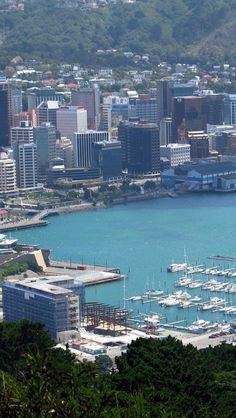Wellington City, one of my favourite places with lots of special friends!
