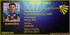 ARQUIVO LOBÃO: GALERIA DE CRAQUES- Gavião