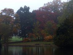 Across the Pond in Abington Park, Northampton