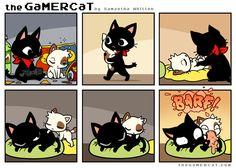 Almost Cute #thegamercat #geek #cat