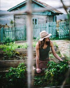 Dream garden.