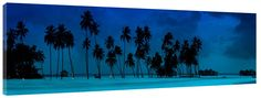 Blue Chill  https://www.greatbigphotos.com/product/tropical/blue-chill-stretched-canvas-prints/ #BlueChillCanvasPrints, #BlueChillFramedPrint, #BlueChillGalleryWrappedCanvasPrints, #BlueChillOceanView, #BlueChillStretchedCanvasPrints, #BlueChillStretchedPrint, #CanvasArt, #CanvasPhotoArtPrints, #CanvasPhotos, #CanvasPictures, #CanvasPrints, #CoconutTrees, #FramedPanoramicArt, #FramedWallArt, #Maldives, #MuseumQualityArtPrints, #MuseumQualityCanvasPrints, #PanoramicCanvasPho