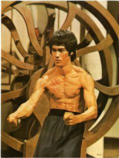 Mr. Bruce Lee