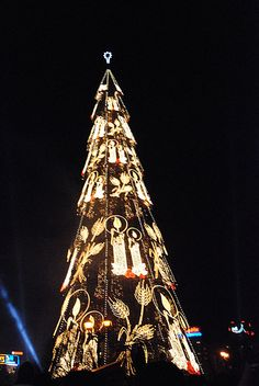 1000+ images about Tallest Christmas trees on Pinterest ...