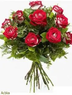 Gifs, Special Flowers, Color Rosa, Beautiful Roses, Floral Wreath, Happy Birthday, Wreaths, Wallpaper, Plants