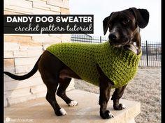 (3) Dandy Dog Sweater Companion Video: Free Crochet Pattern - YouTube Crochet Dog Sweater Free Pattern, Crochet Dog Patterns, Sweater Patterns, Stitch Patterns, Knitting Patterns, Easy Crochet, Free Crochet, Crochet Granny, Female Dog Diapers