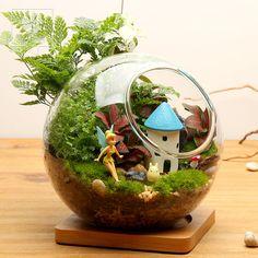 子樂灣苔蘚玻璃生態瓶微景觀創意迷你盆栽辦公室植物DIY龍貓擺件