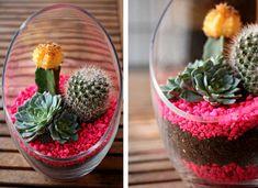 Cactus Terrarium - How to Build a Terrarium