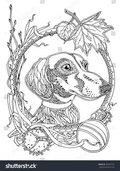 dachshund with autumn elements; coloring page for adults; antistress coloring;