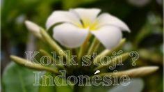 Kolik stojí měsíc v Indonésii?