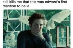 """Just 100 Really Freaking Funny Memes About """"Twilight"""" Just 100 Really Freaking Funny Memes About """"Twilight"""",F U N Just 100 Really Freaking Funny Memes About """"Twilight"""" jokes memes hilarious pictures texts hilarious can't stop laughing Twilight Film, Twilight Saga Quotes, Twilight Jokes, Twilight Saga Series, Twilight Edward, Twilight Poster, Freaking Hilarious, Super Funny, Funny Fails"""