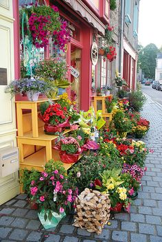 Flower shop in Paris. Like everything else, another charming shop beckoning a visitor to Paris in. French Flowers, My Flower, Flower Power, Beautiful Flowers, Beautiful Places, Vintage Flowers, Merci Boutique, Boutique Shop, Flower Market
