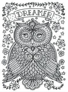 Coloring Page World: Dreamer Owl (Portrait)