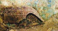 Lee Hallan una tumba de un guerrero griego repleta de tesoros