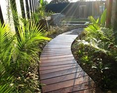 Wood Walkway Design Ideas, Pictures, Remodel, and Decor - page 4 Wooden Pathway, Wood Walkway, Outdoor Walkway, Wooden Garden, Stone Walkway, Landscaping Melbourne, Backyard Landscaping, Florida Landscaping, Landscaping Ideas