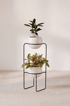 Shop Mila Dual Standing Planter at Urban Outfitters today. We carry all the latest styles, colors and brands for you to choose from right here. Decor, House Plants, Mid Century Modern Plant Stand, Modern Plant Stand, Planter Stand, Plant Decor, House Plants Decor, Iron Decor, Flower Stands
