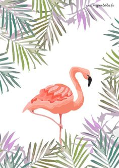 Free Printable - Flamingo Jungle www. Flamingo Art, Pink Flamingos, Illustrations, Bird Art, Watercolor Art, Street Art, Poster, Mandala, Decoration