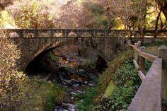 Alum Rock Park    Alum Rock Park, San Jose, CA